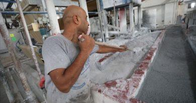 فلسطين.. أول مصنع لإنتاج المناديل الورقية من سعف النخيل